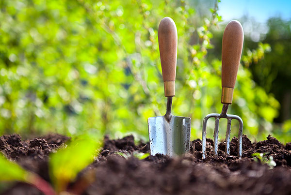 gardening tools in soil